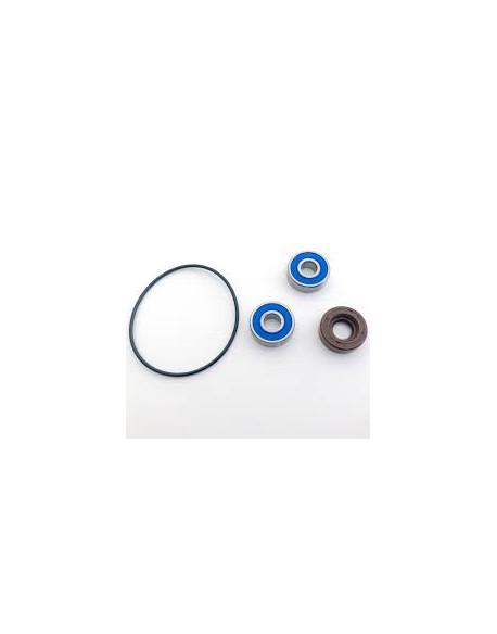 Water Pump Revision Kit