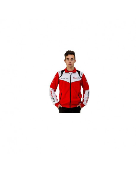 BIREL ART ALPINESTARS SWEATSHIRT